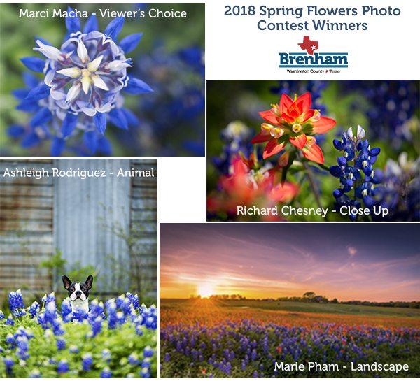 2018 Spring Flowers Contest Collage Brenham Texas Washington